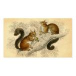 Vintage Squirrel Print Business Card