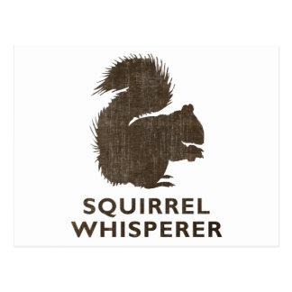 Vintage Squirrel Whisperer Postcard