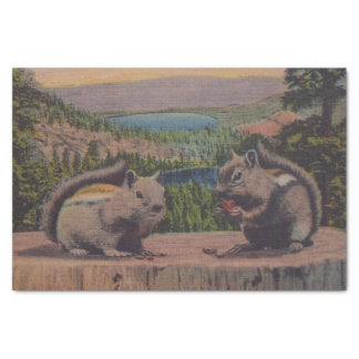 """Vintage Squirrels Mountain Scene 10"""" X 15"""" Tissue Paper"""