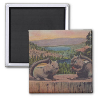 Vintage Squirrels Mountain Scene 2 Inch Square Magnet