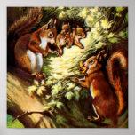 Vintage Squirrels Posters