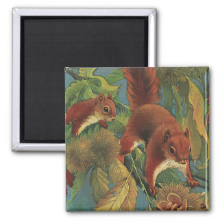 Vintage Squirrels, Wild Animals, Forest Creatures 2 Inch Square Magnet