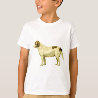Vintage St. Bernard Illustration T-Shirt