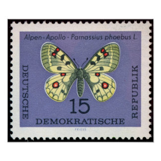 Vintage-Stamp-Art-German-Animal-Insect-Butterfly-3 Póster