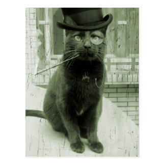 Vintage Steampunk LOL Funny Cat Postcard