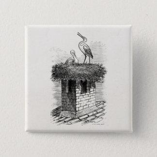 Vintage Stork Bird Nest Bird Antique Template Pinback Button