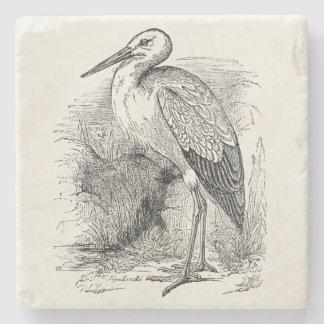 Vintage Stork Bird Personalized Storks Retro Birds Stone Coaster