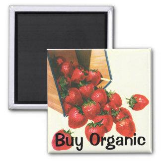 Vintage Strawberries in Basket, Food Fruit Berries Magnet