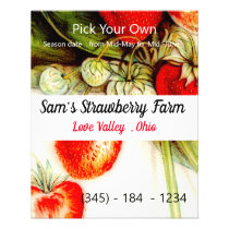 Vintage strawberry - pick your own flyer