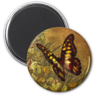 Vintage Style Butterfly Illustration Magnets