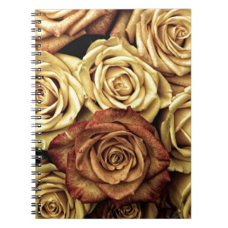 Vintage Style Cream and Red Roses Notebook