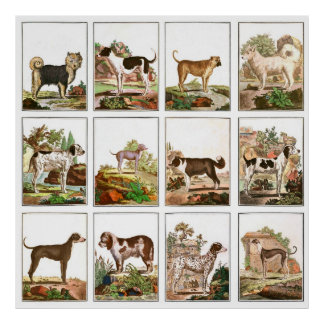 Vintage Style Dog Collage Poster