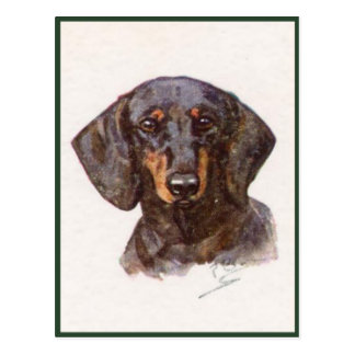 Vintage Style Postcard With Cute Dachshund