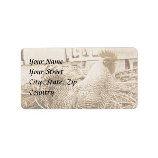 Vintage Style Rooster Photograph Address Label