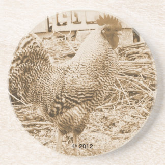 Vintage Style Rooster Photograph Drink Coaster
