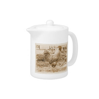 Vintage Style Rooster Photograph Teapot