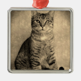 Vintage Style Tabby Cat   Ornament