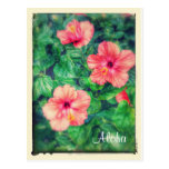 Vintage Style Tropical Hibiscus Flowers Postcard