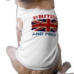 Vintage sucio Reino Unido Ropa Perro