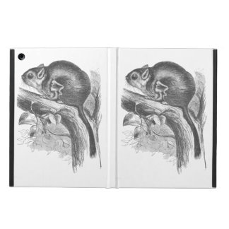 Vintage sugar glider illustration case cover for iPad air
