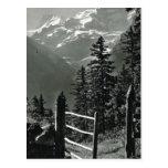 Vintage Suiza Jungfrau, Bernese Oberland Tarjeta Postal