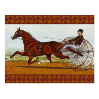 Vintage Sulky Horse Racing Postcard