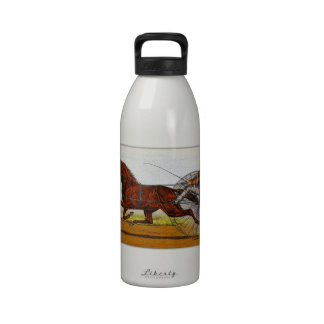 Vintage Sulky Horse Racing Drinking Bottle