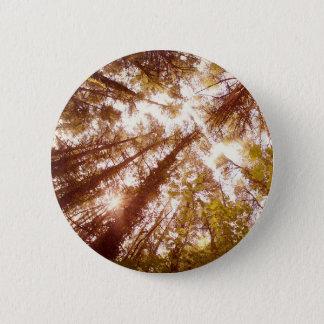 Vintage Summer Trees Pinback Button
