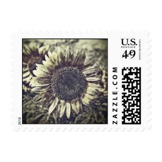 Vintage Sunflower artwork #3 - postage