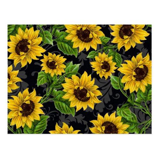 Vintage sunflower pattern postcard