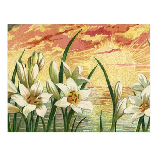 Vintage Sunrise Easter Lilies and Victorian Angels Postcard