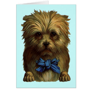 Vintage Sweet Terrier Expression Blank Note Card