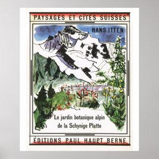 Vintage Switzerland, Schynigge Platte 1909 12 Poster