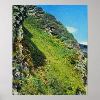 Vintage Switzerland, Schynigge Platte 1909 4 Poster