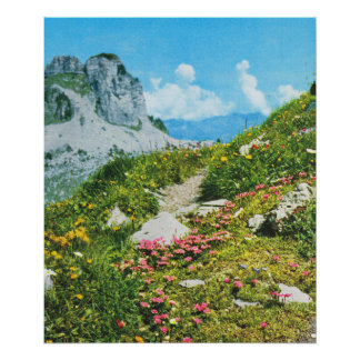 Vintage Switzerland, Schynigge Platte 1909 5 Poster