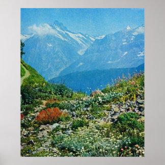 Vintage Switzerland, Schynigge Platte 1909 8 Poster