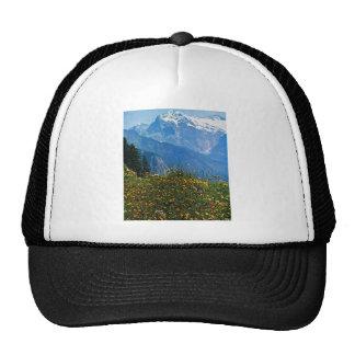 Vintage Switzerland, Schynigge Platte, 1909 Trucker Hat