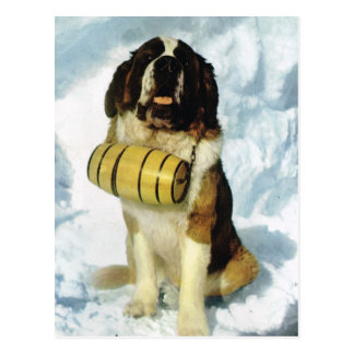 Vintage Switzerland St Bernard dog with  brandy Postcard
