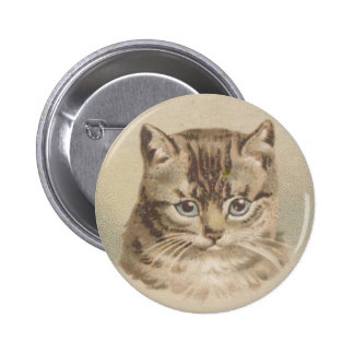 Vintage Tabby Cat Pinback Button