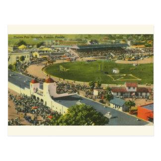 Vintage Tampa Florida Fair Grounds Postcard