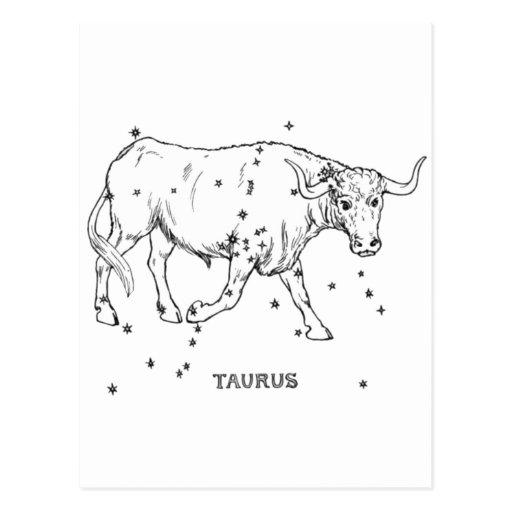 Vintage Taurus Postcard