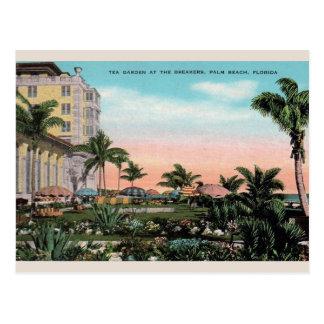 Vintage Tea Garden at Breakers Palm Beach Postcard