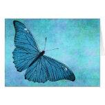 Vintage Teal Blue Butterfly 1800s Illustration Greeting Cards