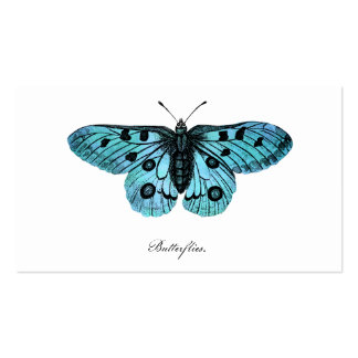 Vintage Teal Blue Butterfly Illustration -1800's Business Card Templates