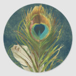 Vintage Teal Peacock Feather Classic Round Sticker