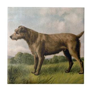 Vintage Terrier irlandés en paisaje del país Azulejo Cuadrado Pequeño