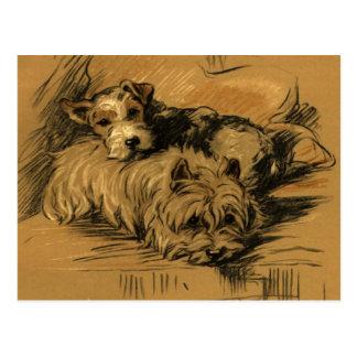 Vintage Terrier y Westie Postal