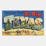 Vintage Texas Sticker