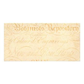 Vintage Text Botanist Parchment Paper Template