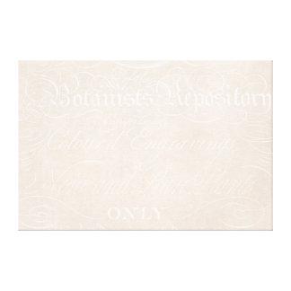 Vintage Text Botanist Parchment Paper Template Canvas Print